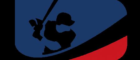logo-ffbsi
